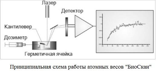 схема работы атомных весов