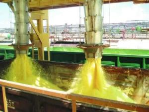 Загрузка зерна в вагоны