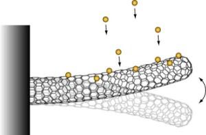 Нановесы на основе углеродистой трубки